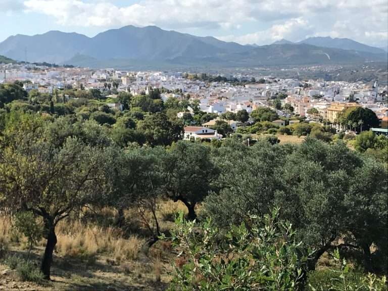 Casa Bajo uitzicht op dorp Alhaurin el Grande 15
