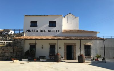 "Het Olijfoliemuseum ""Aceites Molisur"" Andalusie"